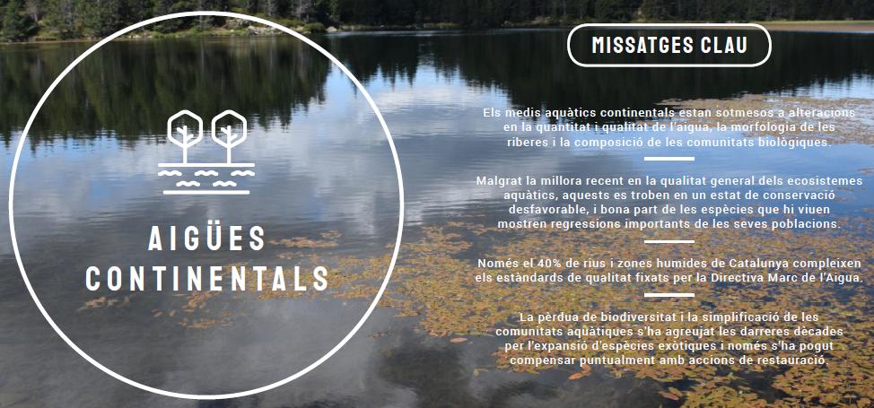 MIssatges clua de l'estat de les aigües continentals, informe del 2020