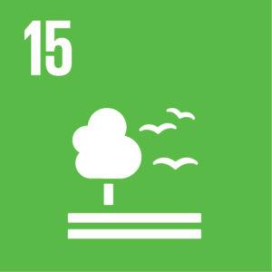 Icona de l'objectiu de desenvolupament sostenible número 15 sobre la vida a terra