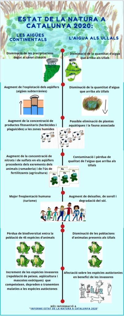 Infografia que explica les idees clau de l'estat de la natura a Catalunya 2020, en relació a les aigües continentals i la seva afectació a les aigües dels Ullals