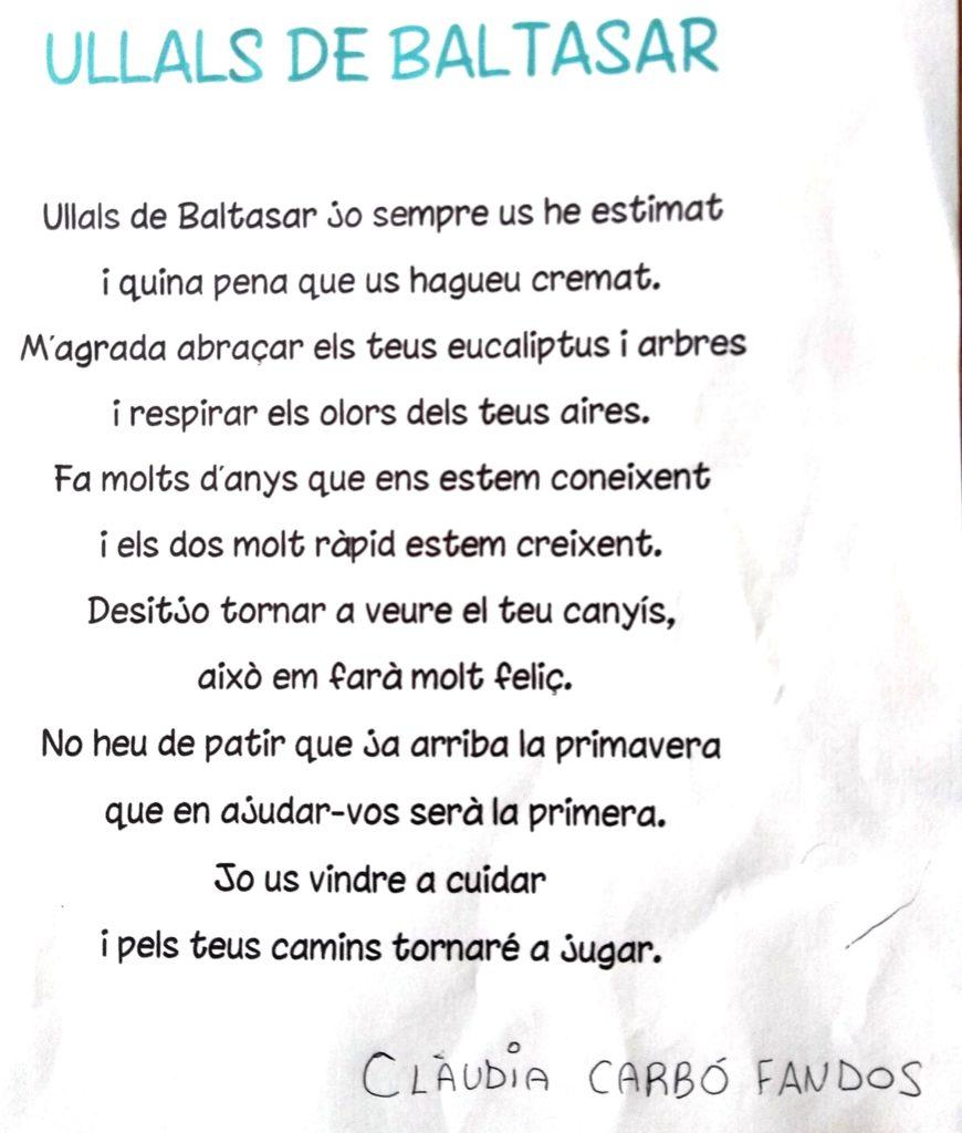 Poema que Clàudia dedica als Ullals en veure el canyissar cremat