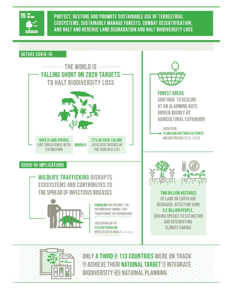 Infografia sobre els efectes de la COVID19 en el manteniment dels ecosistemes terrestres