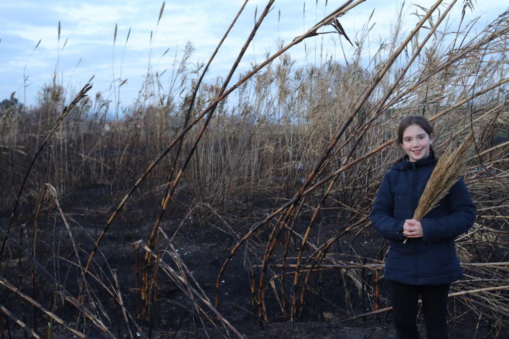 Clàudia, una alumna de 6t, posa davant del canyissar cremat de manera intencionada l'hivern del 2019