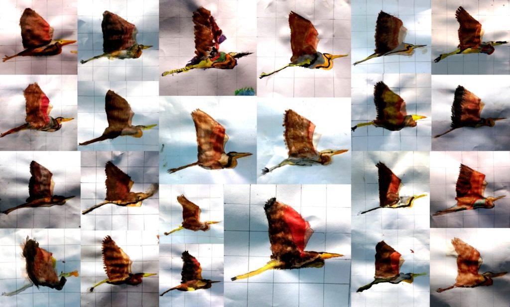Col·lecció d'aquarel·les amb un agró volant